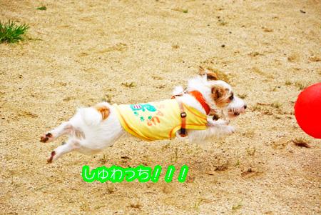 141014_yuasa7.jpg
