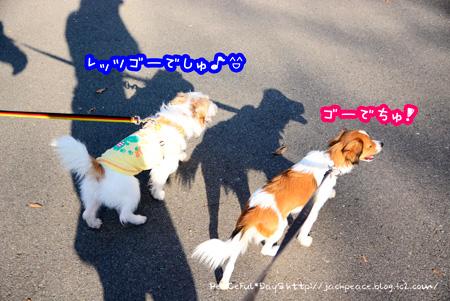 141023_fudoki.jpg