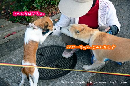 141023_fudoki17.jpg