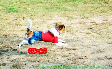 141030_yuasa27.jpg