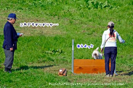 141116_kyougi11.jpg