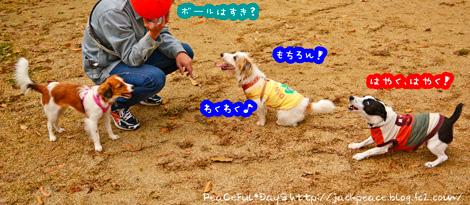 141130_yuasa2.jpg