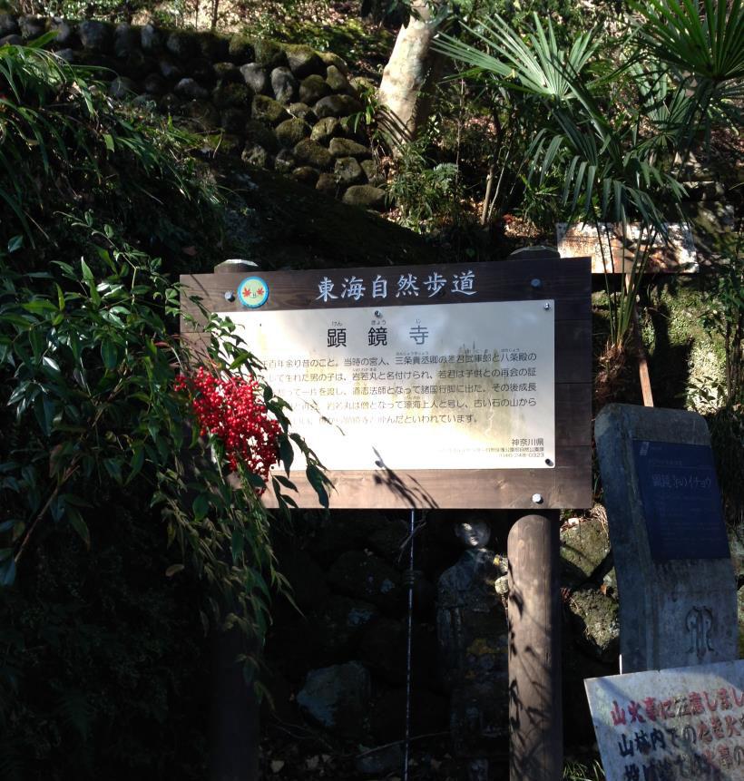 kenkyozi37.jpg