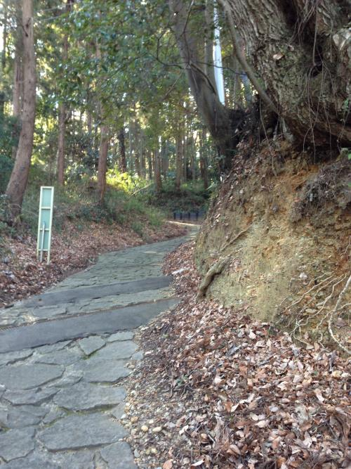 takiyamazyou12.jpg