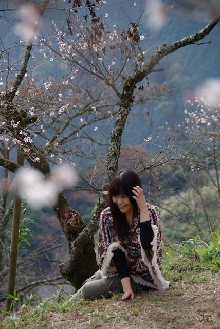 111113桜山モデル13