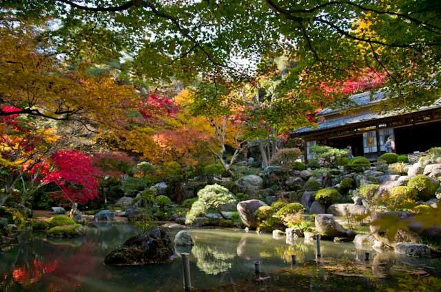 20121118徳明園01