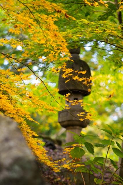 20121118徳明園09