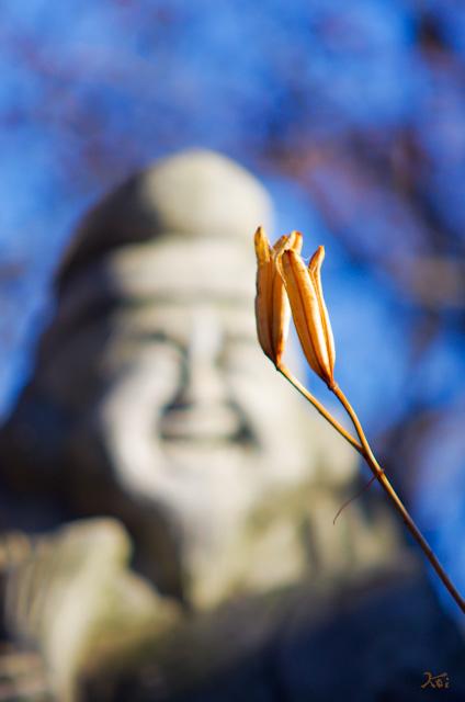 20121229常楽寺06