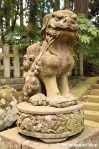 三国神社(福井県坂井市三国町山王)19