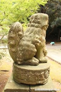 三国神社(福井県坂井市三国町山王)15