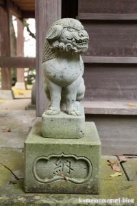 三国神社(福井県坂井市三国町山王)62