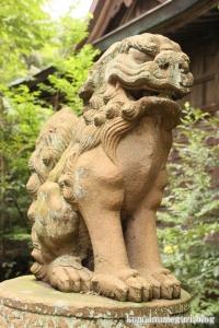 三国神社(福井県坂井市三国町山王)80