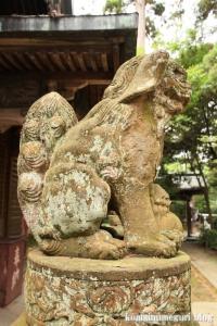 三国神社(福井県坂井市三国町山王)86