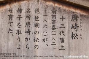 兼六園(石川県金沢市兼六町)16