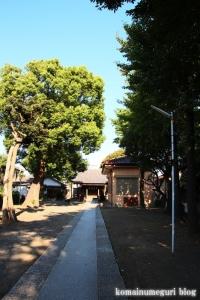 杉山大神(川崎市幸区小倉)9