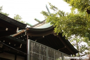 小杉神社(川崎市中原区小杉御殿町)8