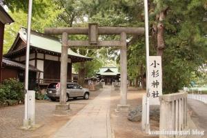 小杉神社(川崎市中原区小杉御殿町)16