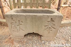 小杉神社(川崎市中原区小杉御殿町)20