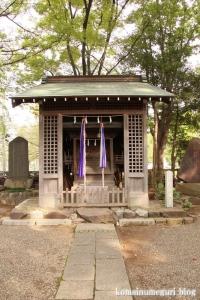 小杉神社(川崎市中原区小杉御殿町)12