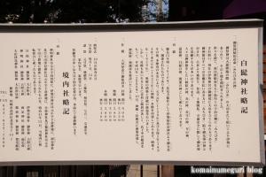 白髭神社(川崎市高津区北見方)8