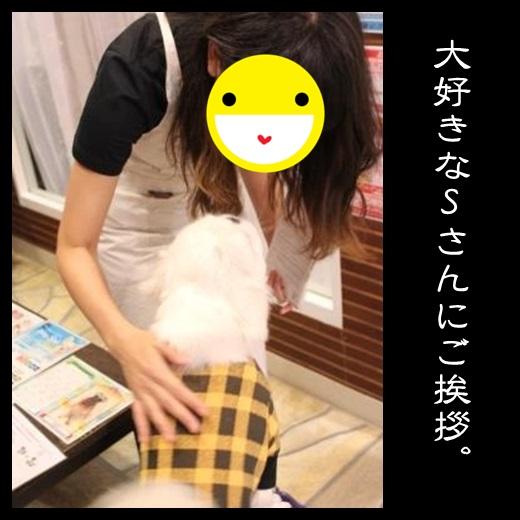 2_20131207144851bfe.jpg