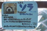 とくしま動物園_10