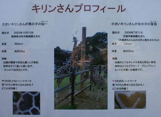 みさき公園_5