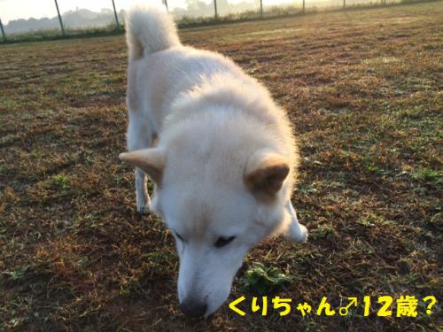 IMG_5726Blog.jpg