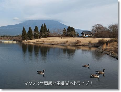 20120101-05.jpg