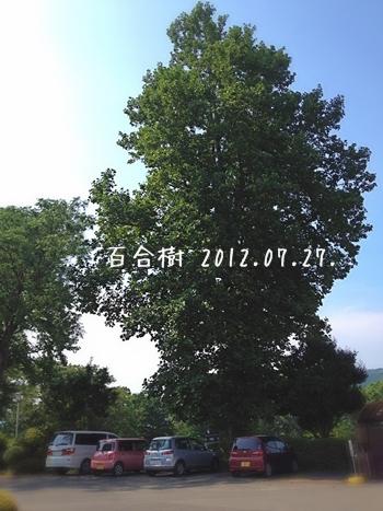 20120727-03.jpg