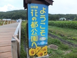 hananomiyako-20120908-20s.jpg