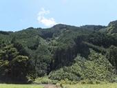 ikawa-20120819-04s.jpg