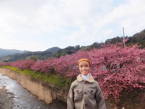 kawadu-20130302-04s.jpg