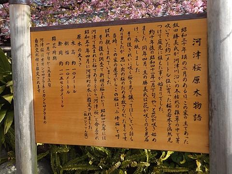 kawadu-20130302-12s.jpg