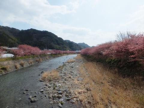 kawadu-20130302-20s.jpg