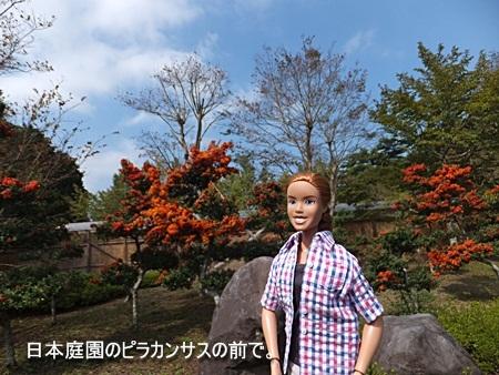 niji-20111009-04s.jpg