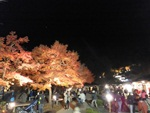 nijinosato-20111126-16s.jpg