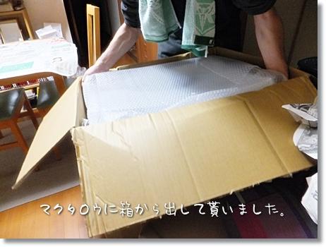 nini-20111119-03.jpg