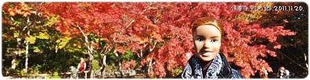 nini-20111120-01s.jpg