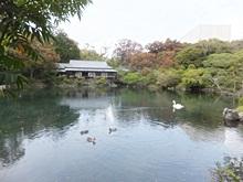 rakujyuen-20111002-12s.jpg