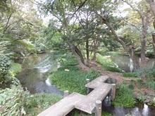 rakujyuen-20111002-15s.jpg
