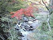 yamanashi-20121103-35s.jpg