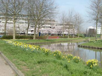 2010春①