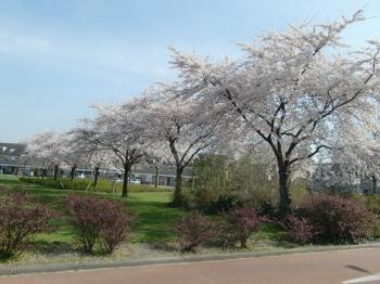 2010春②