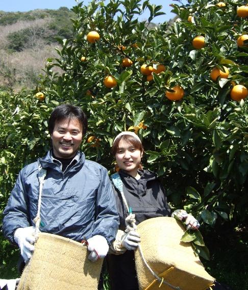 木成り八朔の栽培担当の上門孝年夫婦