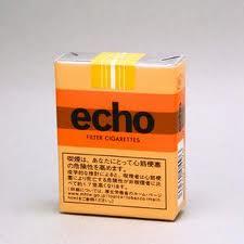 「echo」から「わかば」に変えてみた