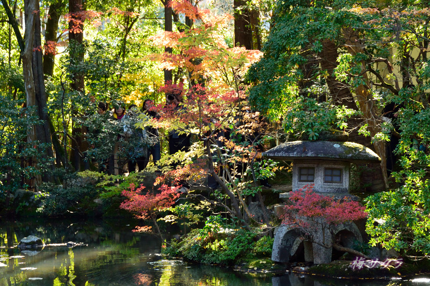 京都2(4)変更済