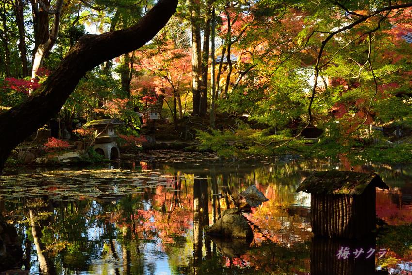 京都2(7)変更済