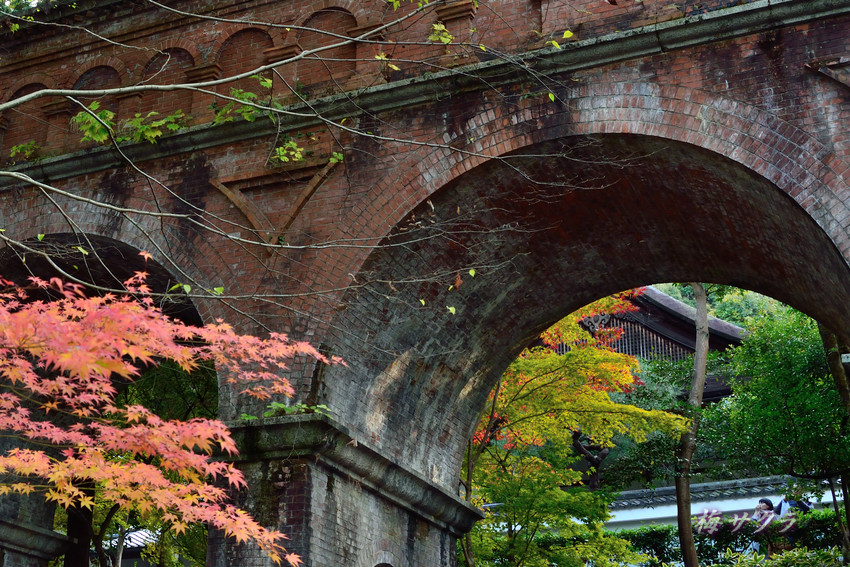 京都3(3)変更済