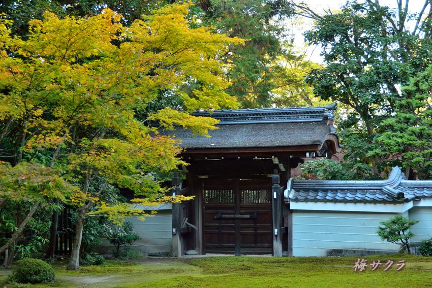 京都4(1変更済